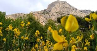 Pays d'Aix: de la communauté au territoire