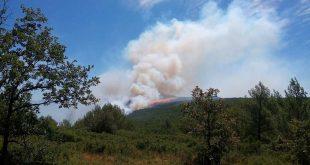 Important feu de forêt sur le domaine de Branguier
