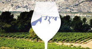 16ème rallye découverte des vins de la Saine-Victoire | Samedi 21 octobre 2017