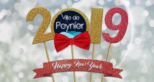 Meilleurs vœux pour l'année 2019 !