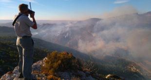 Les feux de forêts ne sont pas une fatalité !